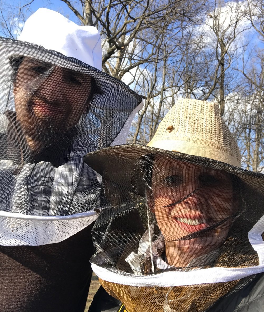 Intreegue Design beekeeping