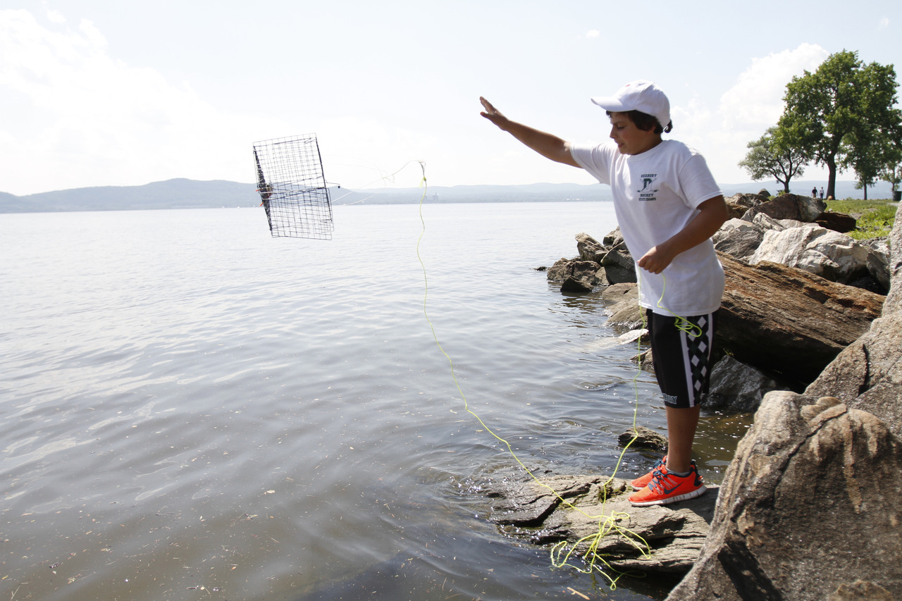 Kevin Reynolds, 11, of Duxbury, Mass., goes crabbing in the Hudson River at Croton Landing Park while visiting his grandparents in Croton-on-Hudson June 17, 2013. (Dave Gershgorn/ The Journal News)