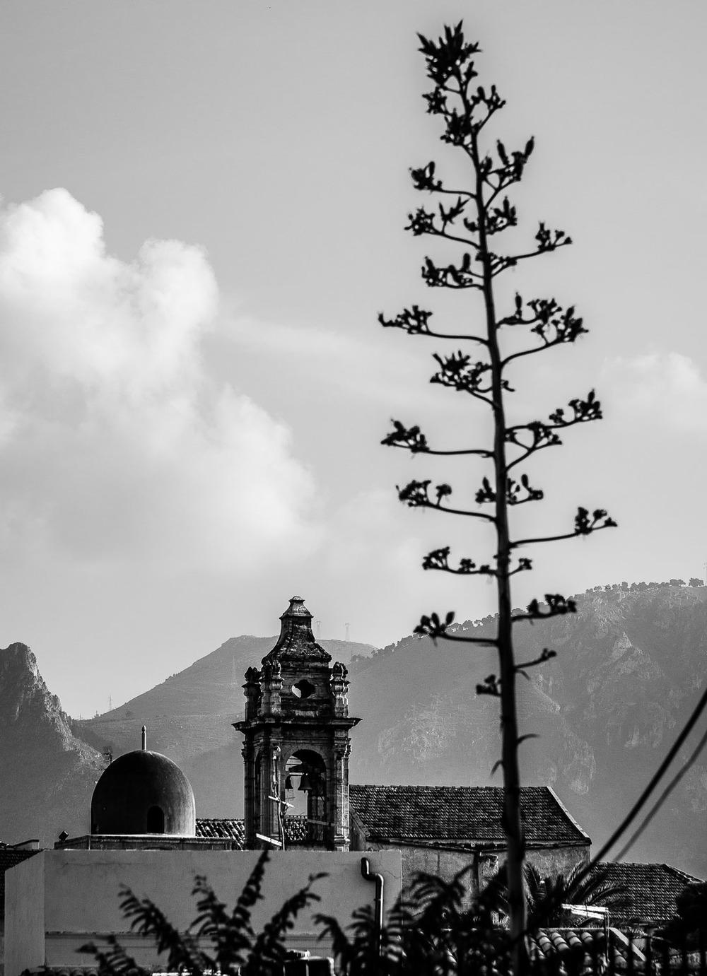 Palermo_045.jpg