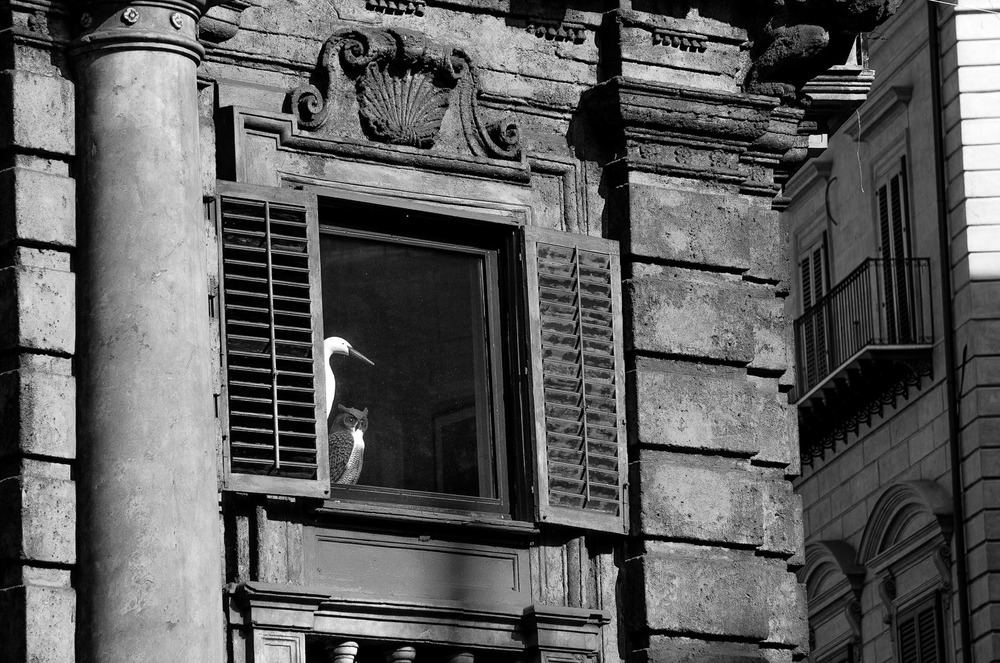 Palermo_069.jpg