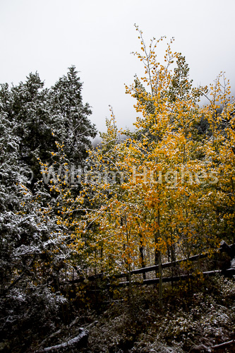 20161006-First Snow-012