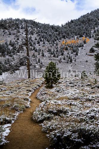 20161006-First Snow-263