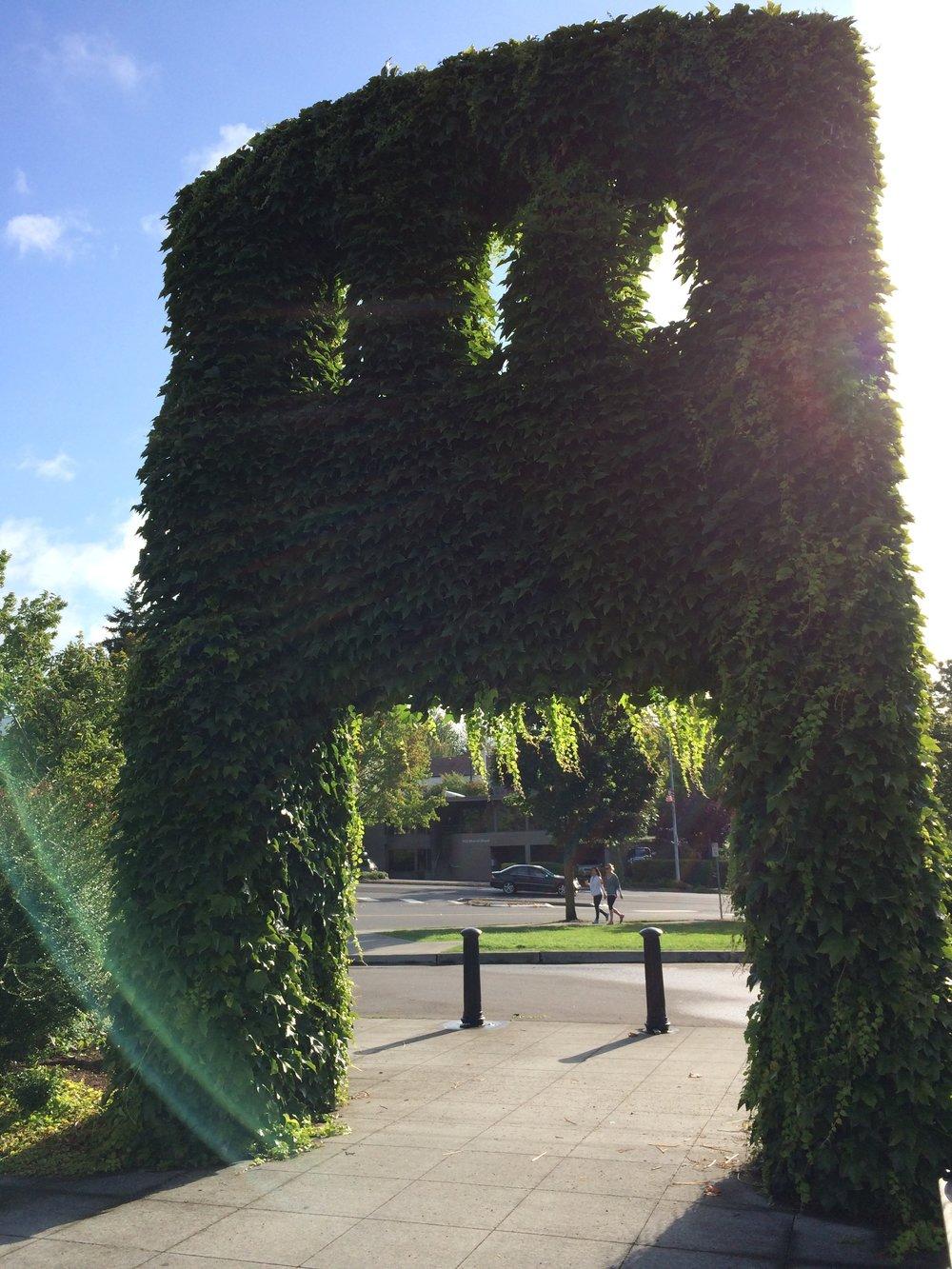 Evergreen Entry