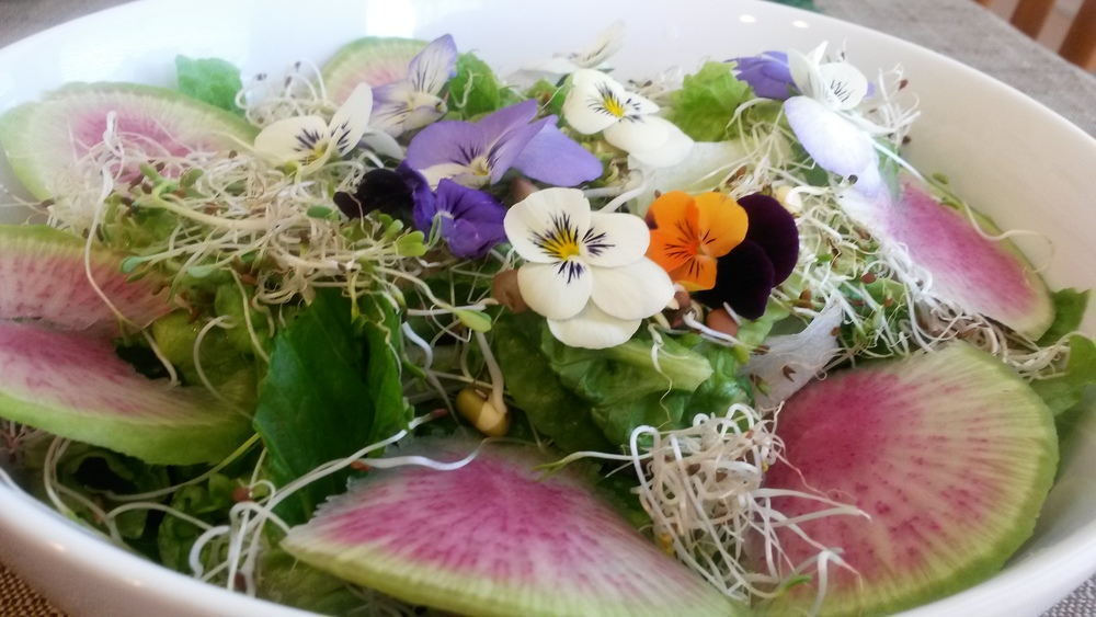 Rainbow radish, sprouts, romaine lettuce, and floral accents. The flowers don't taste like anything so I look forward to trying them in other dishes.