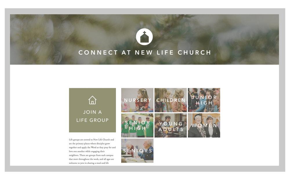 NLC website 3.jpg