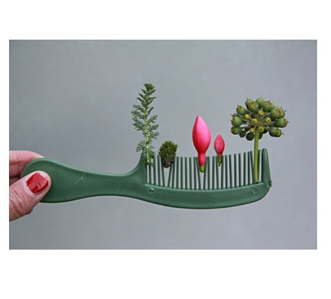 sabine-timm-comb-garden-pk-g_p1.jpg