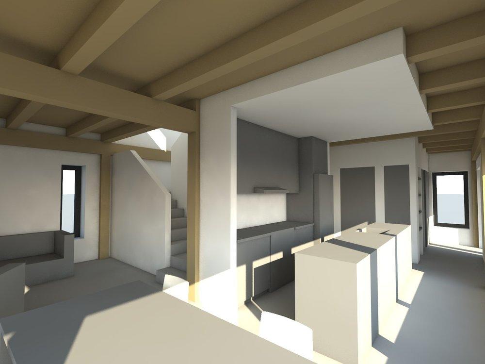 Blanchovic Passive House, preliminary design rendering by PLOTNONPLOT Architecture Inc.