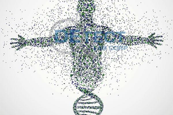 DNA Ancestry.jpg