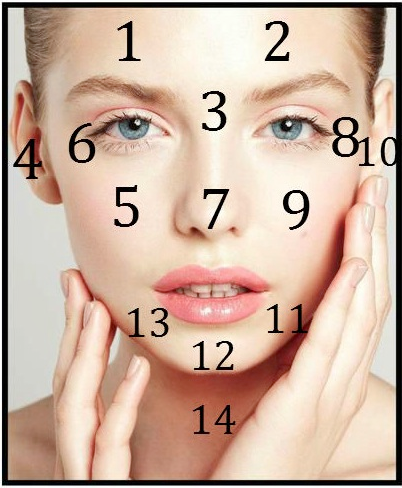 Chinese Face Mapping. Source: The Love Vitamin.