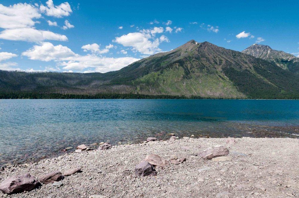 russian-olive-glacier-lake-mcdonald.jpg