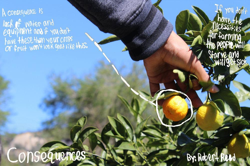 j170314_SnapShot_Sp17_foodjustice_robert.jpg