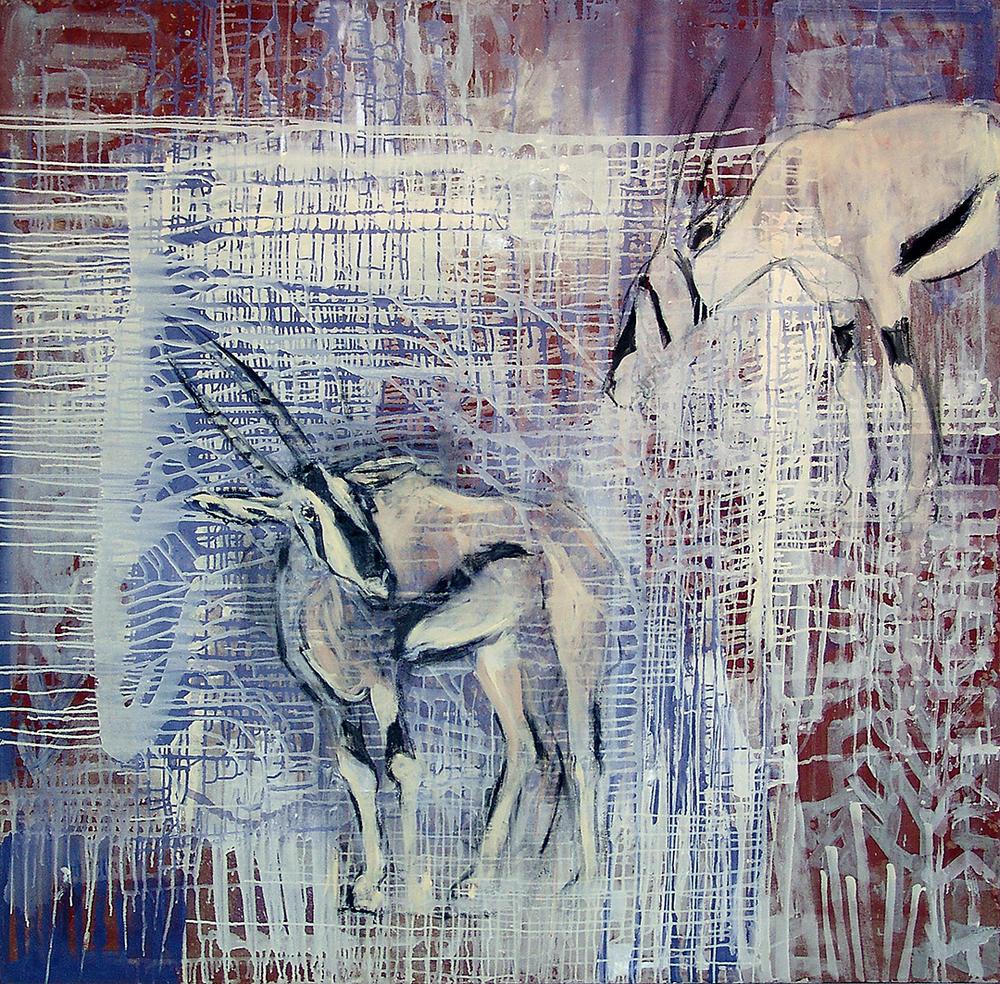 Awash River: Beisa Oryx