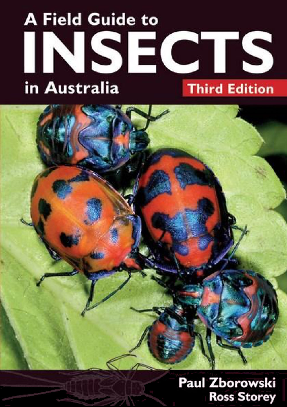 A-Field-Guide-to-Insects-in-Australia.jpg