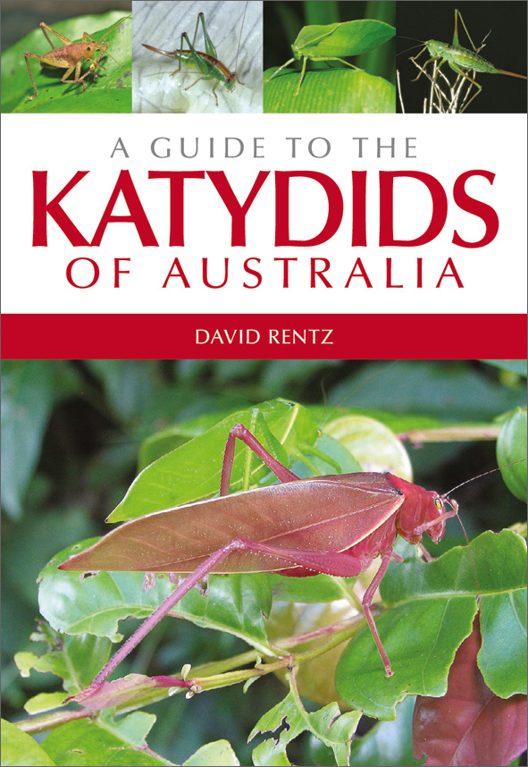 A Guide to the Katydids of Australia, David Rentz.jpg