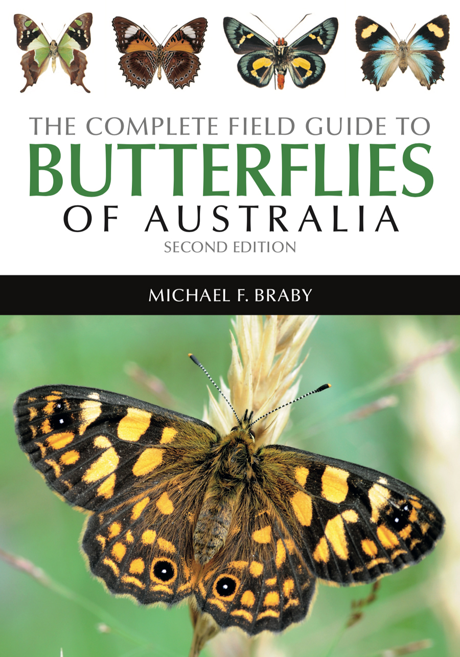 The-Complete-Guide-to-Butterflies.jpg