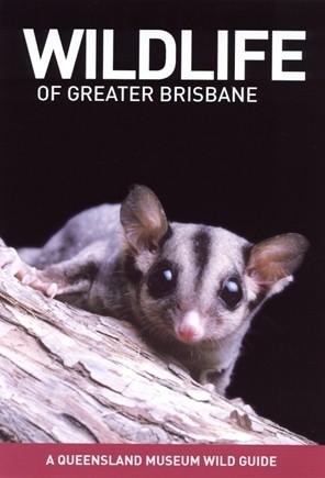 wildlife-of-greater-brisbane.jpg