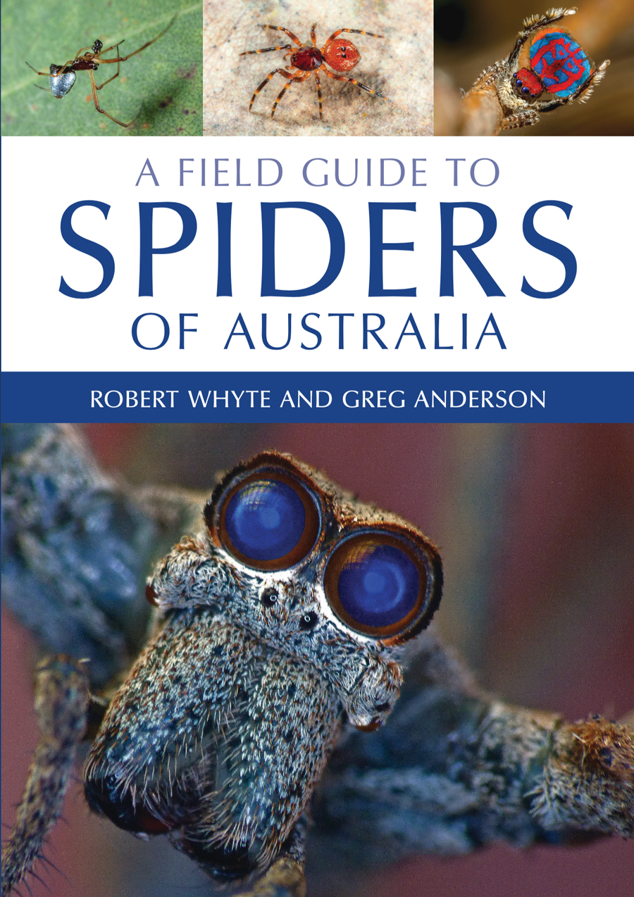 field-guide-to-spiders-of-australia.jpg