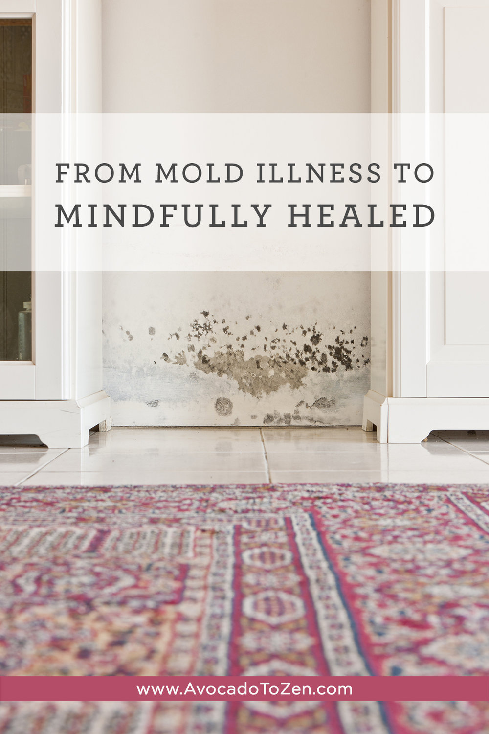 mold illness to mindfully healed