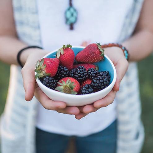 leaky gut — Blog — Avocado to Zen
