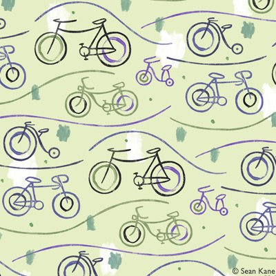 Sean-Kane-Cycling-Bicycles