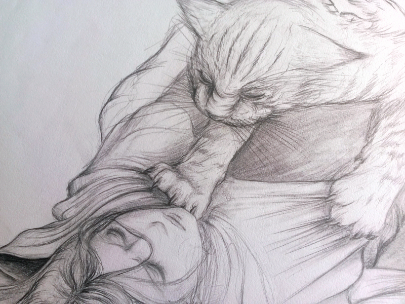 wildcat 3.jpg