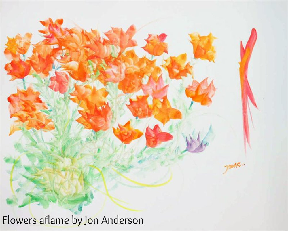 Flowers aflame by Jon Anderson