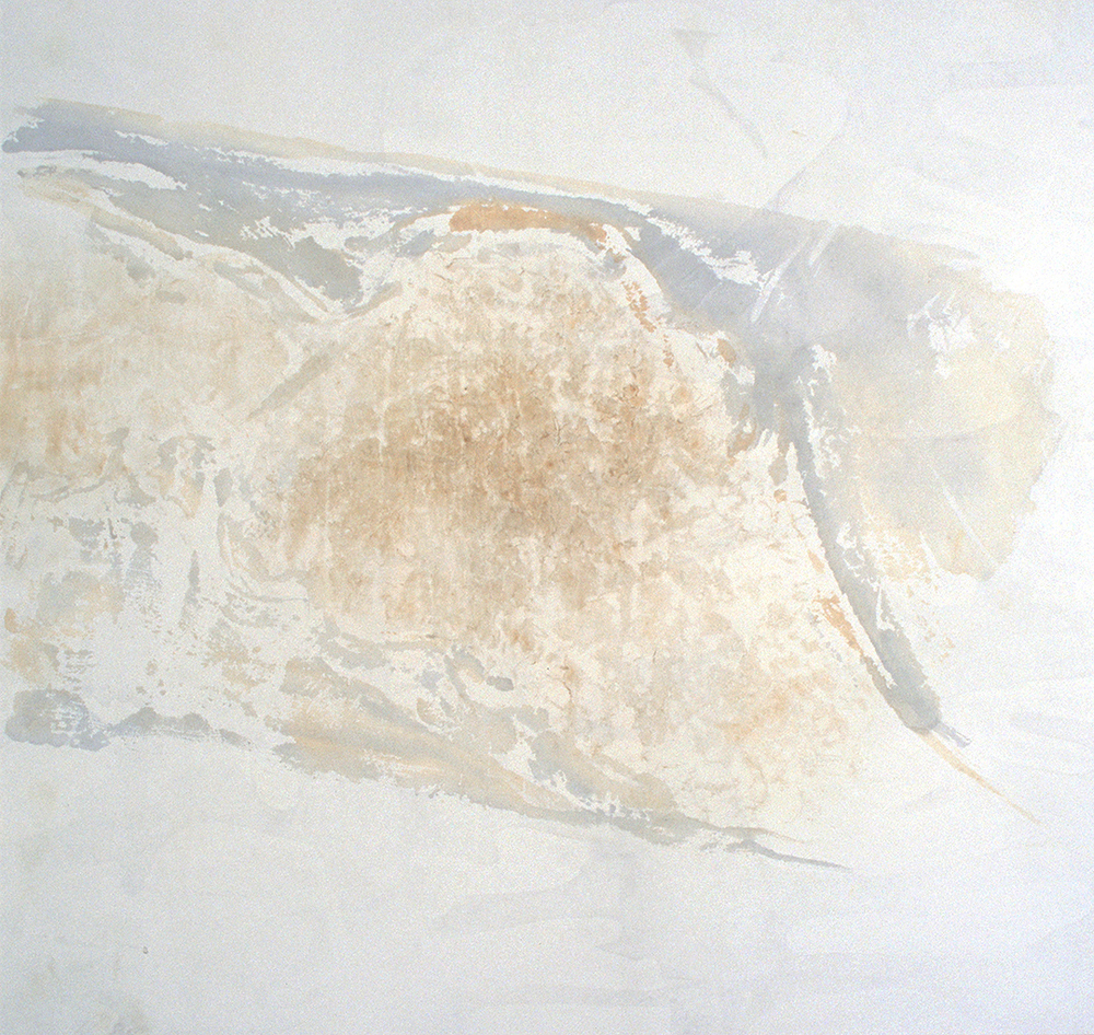 """Travertine Cliffs: Scrims,"" New River at Sinking Creek, 2002"