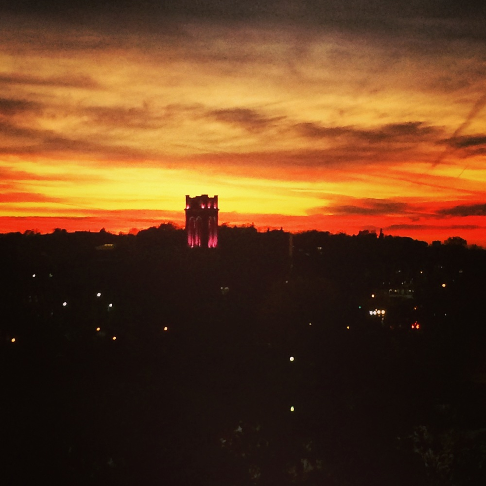 Last Friday's spectacular sunset, from the roof.