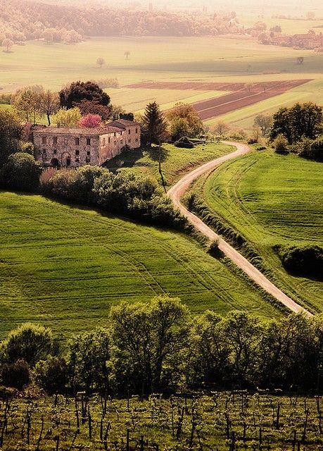 tuscany_hills.jpg