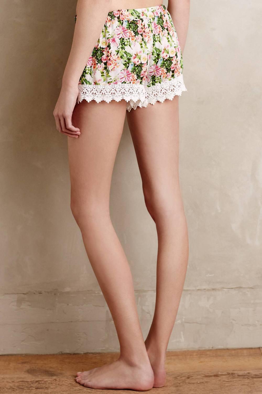 shorts.jpeg