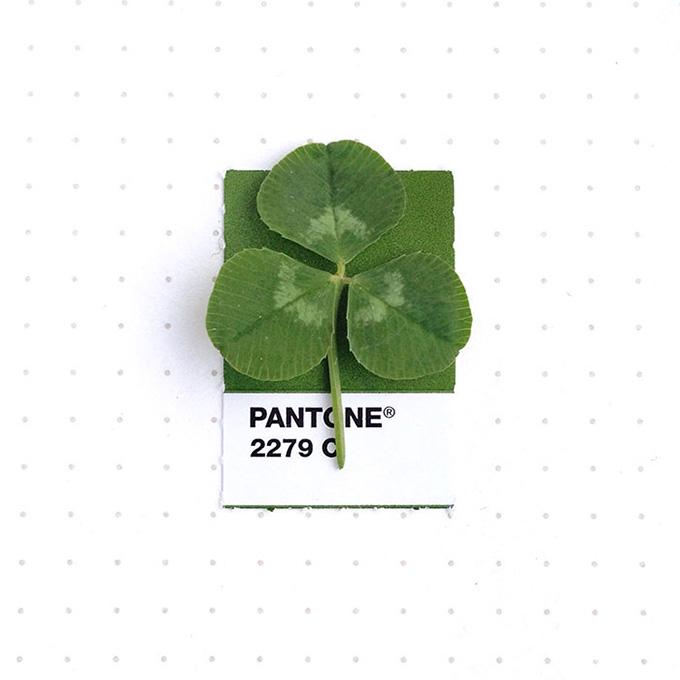 pantone-matching-system-everyday-objects-tiny-pms-project-inka-mathews-houston-texas-1-1.jpg