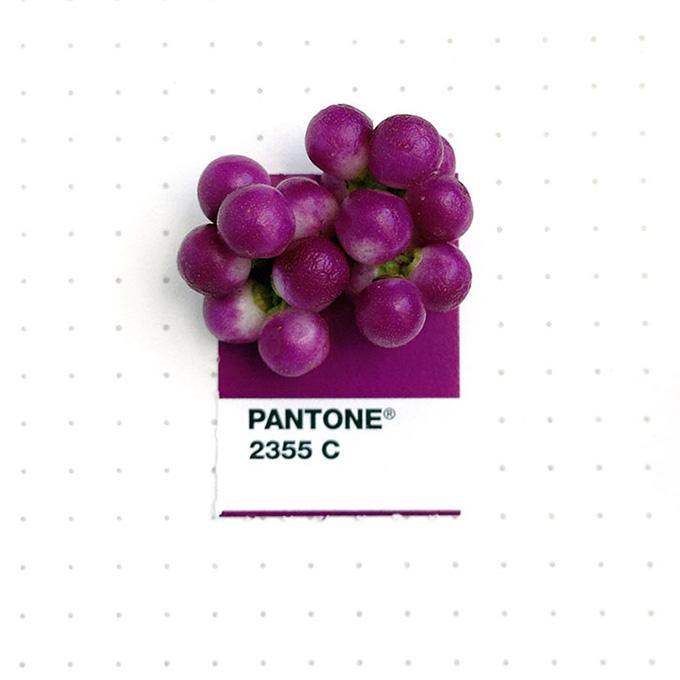 pantone-matching-system-everyday-objects-tiny-pms-project-inka-mathews-houston-texas-2.jpg