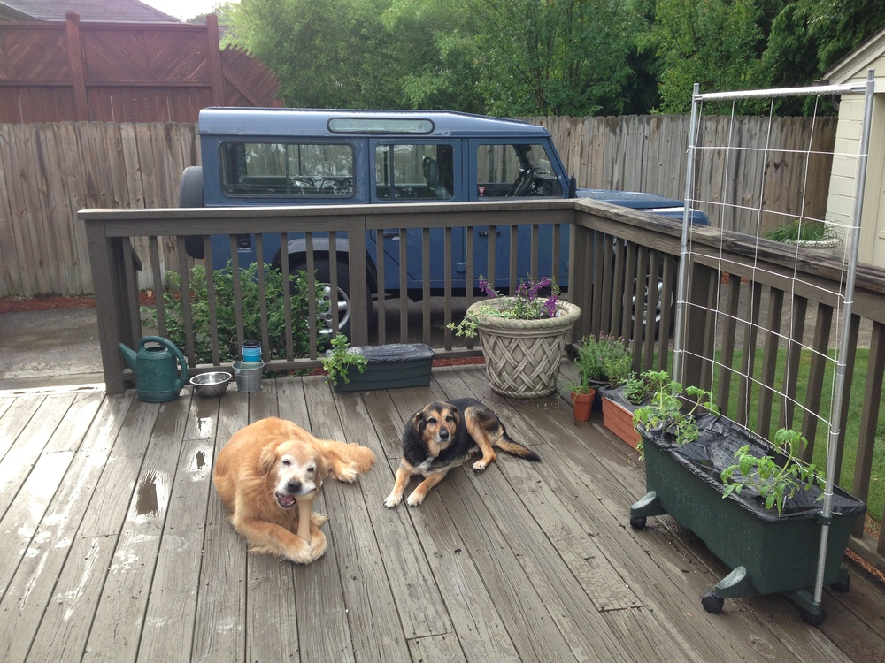 turds, earthboxes and husband's adventure mobile
