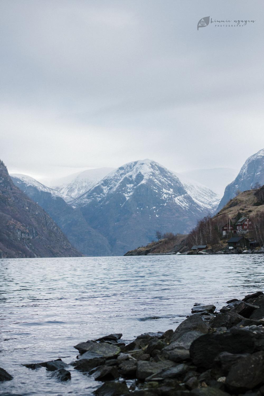 Fjord | Norway 1014