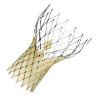 Transcatheter Aortic Valve Replacement - CoreValve