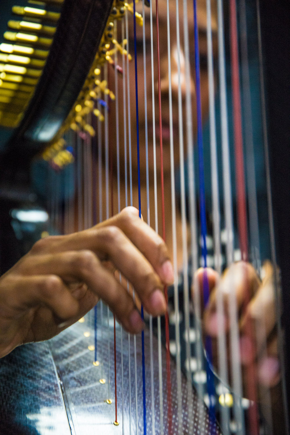Sheela Bringi on Celtic Harp during the BH session at Bucket's Moving Company. Credit Eron Rauch.