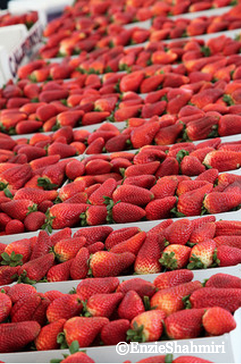 Strawberries from local Market ©EnzieShahmiri