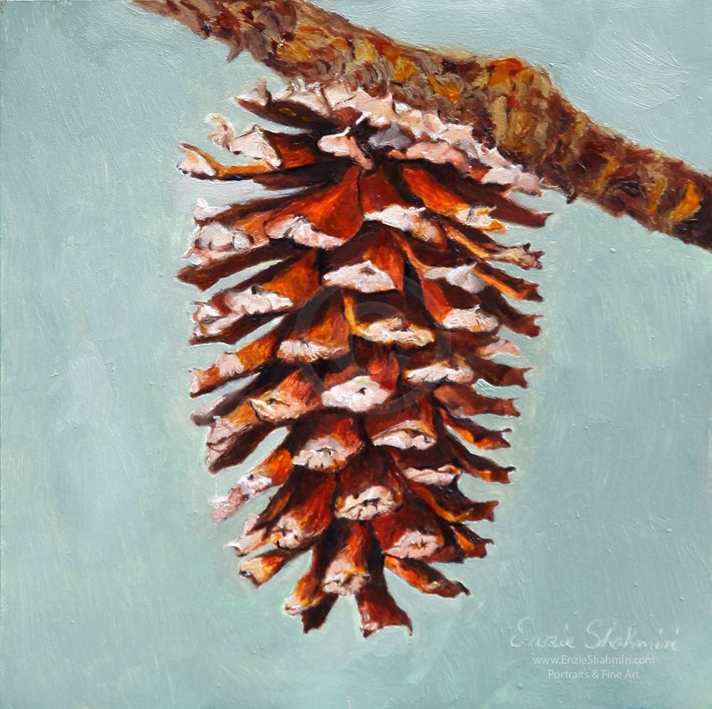 pine_cone_for_blog.jpg