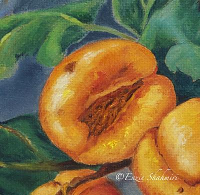 Apricot+Detail+by+Enzie+Shahmiri.jpg