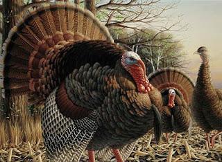 Turkey+by+John+House.jpg