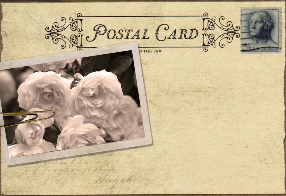 vintage-postcard-with roses.jpg