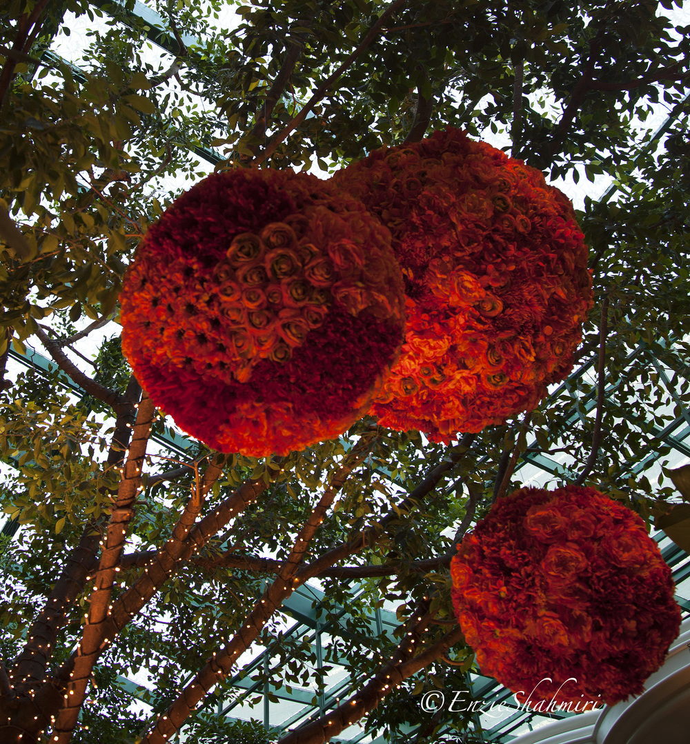 red-rose-flower-balls.jpg