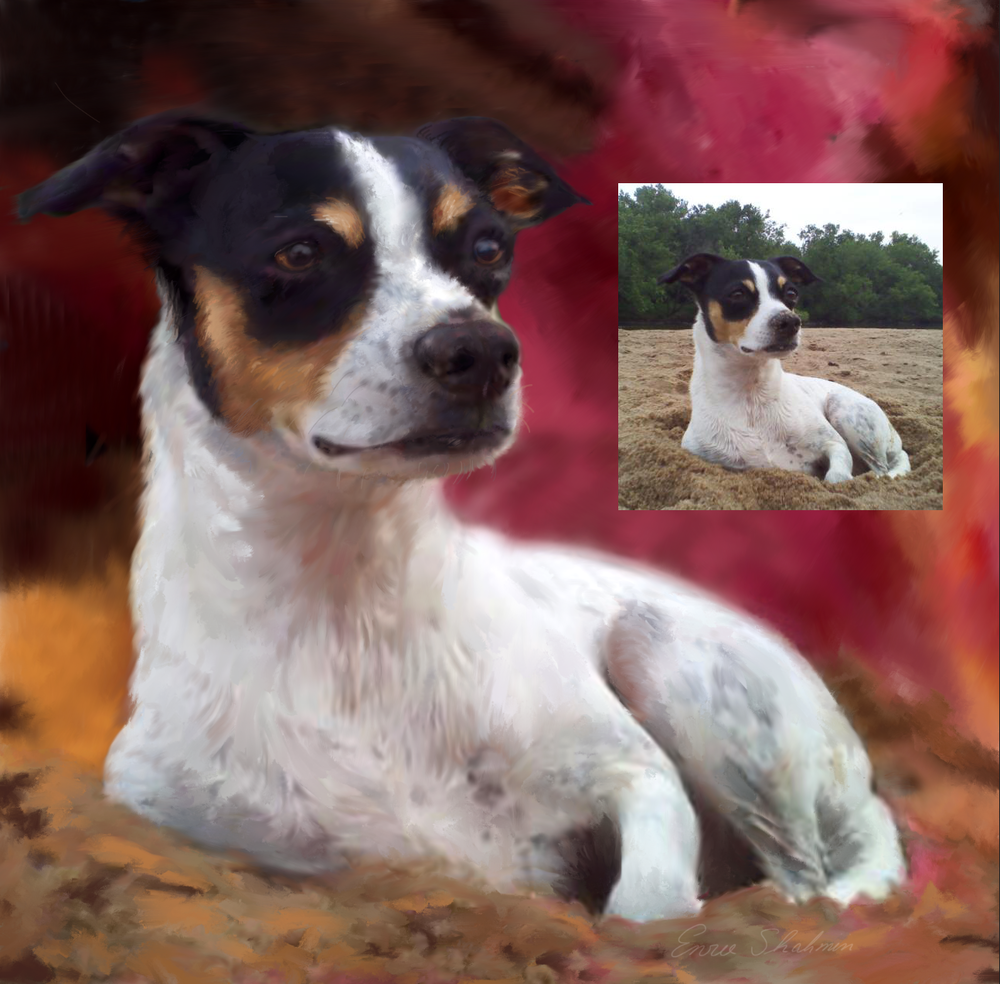 Rat Terrier Custom Pet Portrait before and after