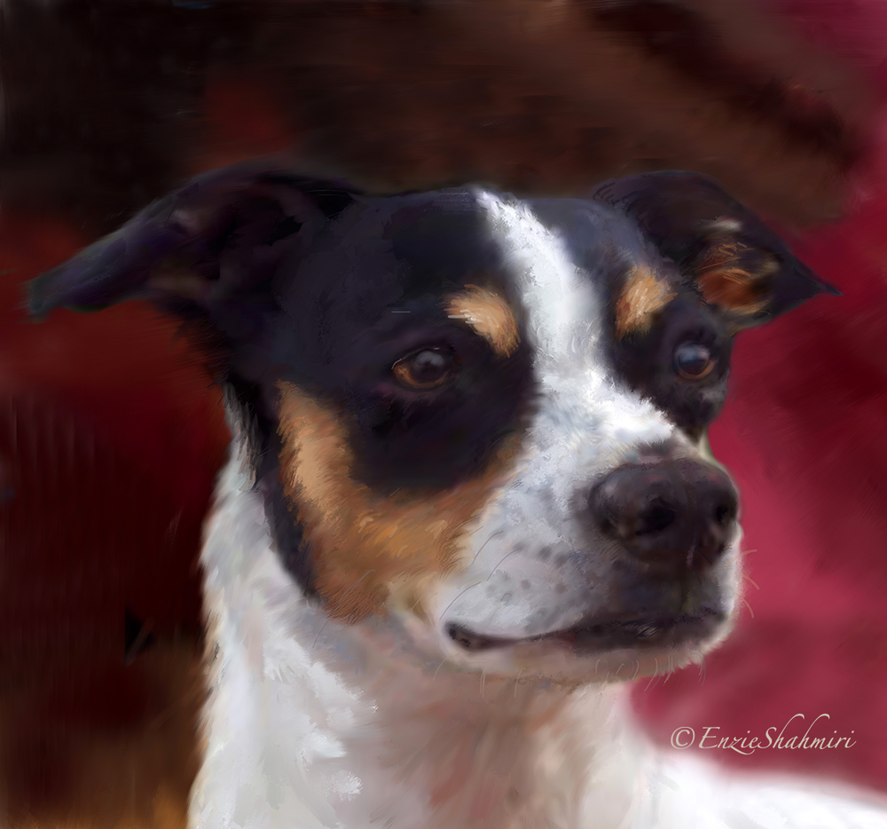 Head Detail - Pet Portraits by Enzie Shahmiri