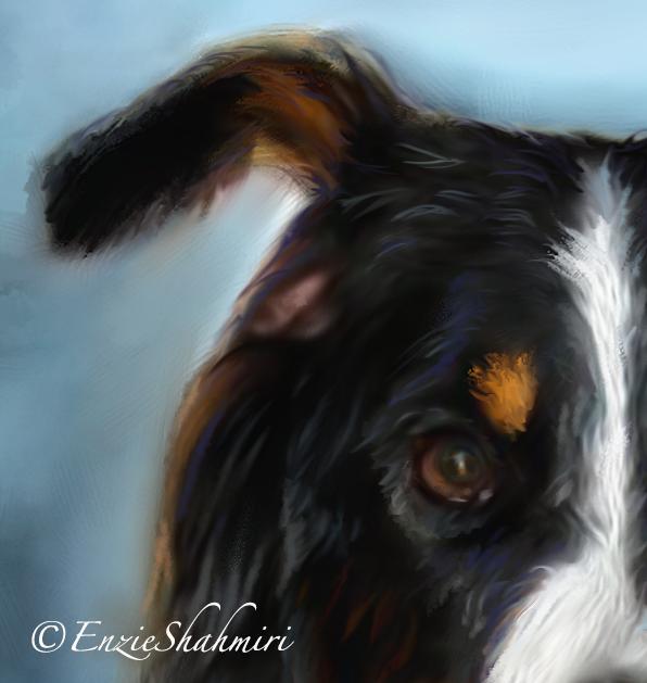 Dog Portrait Eye Detail