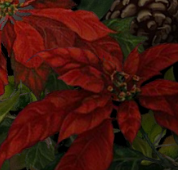 poinsetta.png