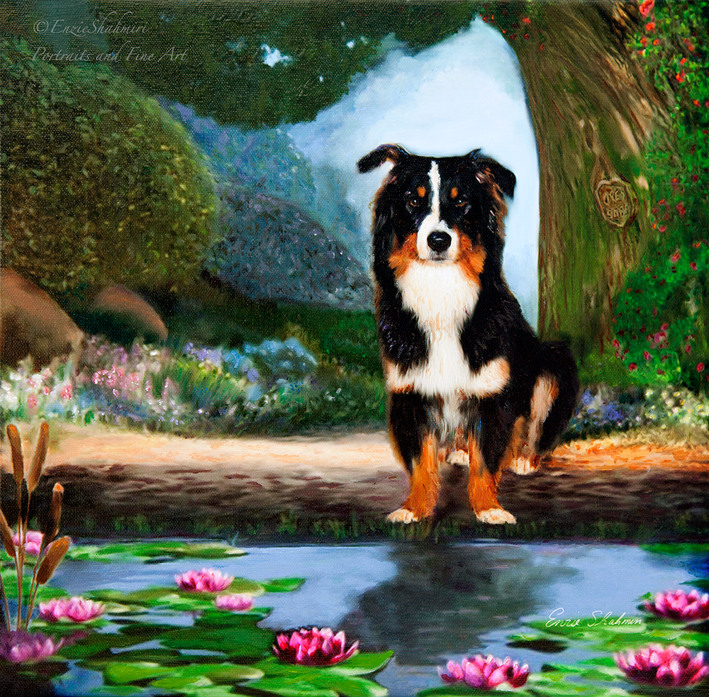 Border Collie Portrait of Oreo - Sold