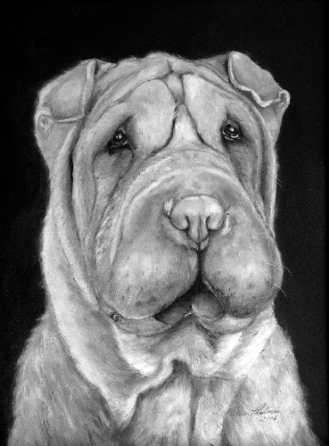 """Dear Enzie, The Sharpei painting is beautiful and it will occupy a space of honor in my new home!!! Thank you sooo much for everything Enzie! I am thrilled to know you and have your wonderful art in my home."" Mrs. Joanne Henderson, NV"