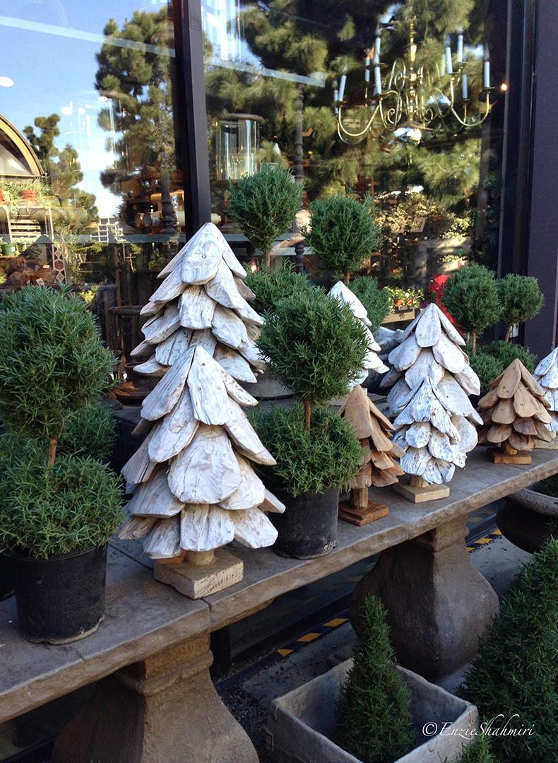 Various Pines