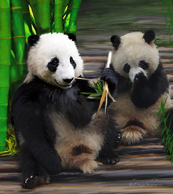 """Pandas"" by Enzie Shahmiri"